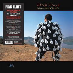 Пластинка PINK FLOYD DELICATE SOUND OF THUNDER LP